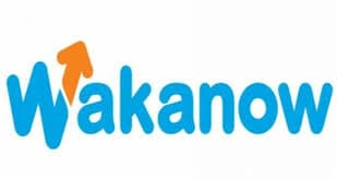 wakanow holiday package